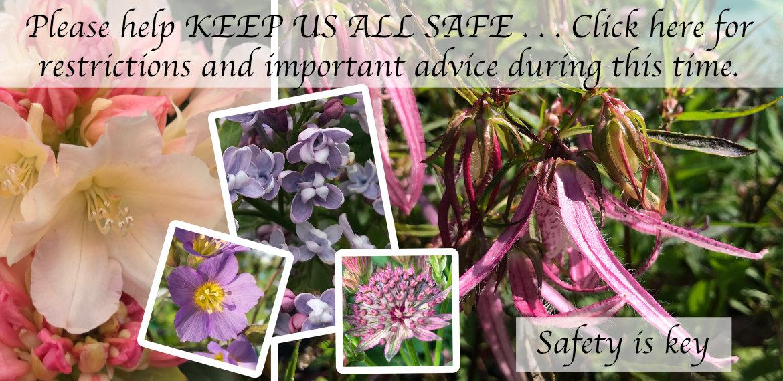 Keep us safe