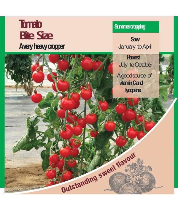 Tomato Bite Size Seeds