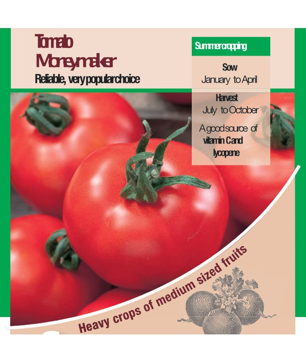 Tomato Moneymaker Size Seeds