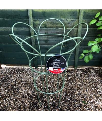 Cottage Garden Herbaceous Basket Large - Sage