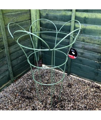 Cottage Garden Herbaceous Basket Medium - Sage