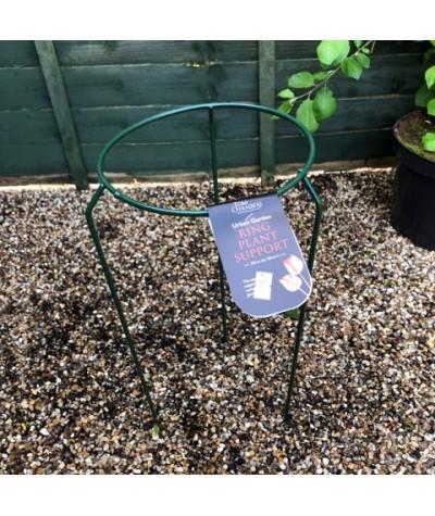 Urban Garden Ring - Small